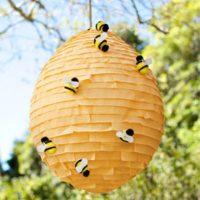 625 Beehive Pinata 1.jpg