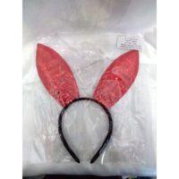 Bunny Ears Sequence Pink 1.jpg