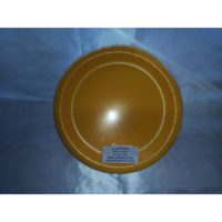 Plates Large Yellow 1.jpg